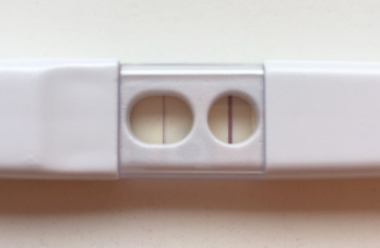 zwangercshap